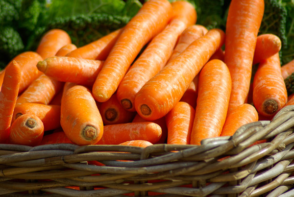 Carrots | Tem-Cole | Top Class | TC Marketing