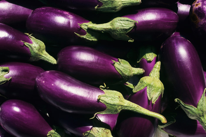 Eggplant | Tem-Cole | Top Class | TC Marketing