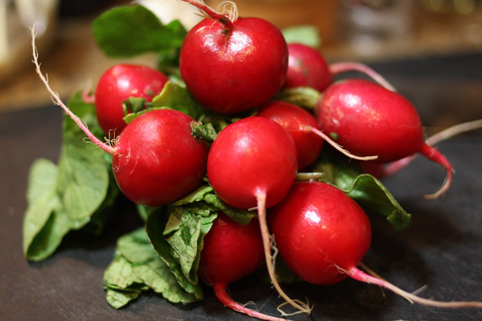 Radishes | Tem-Cole | Top Class | TC Marketing