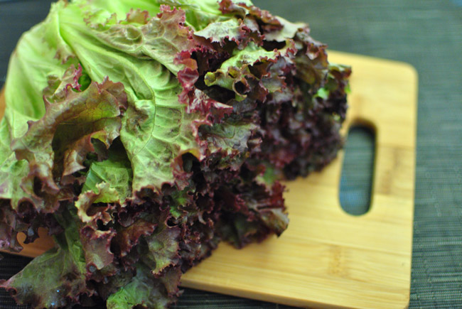 Red Leaf Lettuce | Tem-Cole | Top Class | TC Marketing