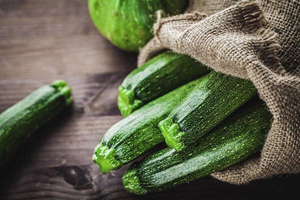 Zucchini | Tem-Cole | Top Class | TC Marketing